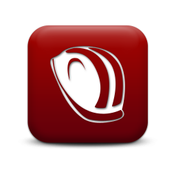 icon red safety